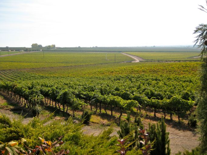 Washington winery