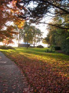 Marine Park, Bellingham