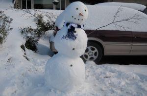 Whatcom County Snowman